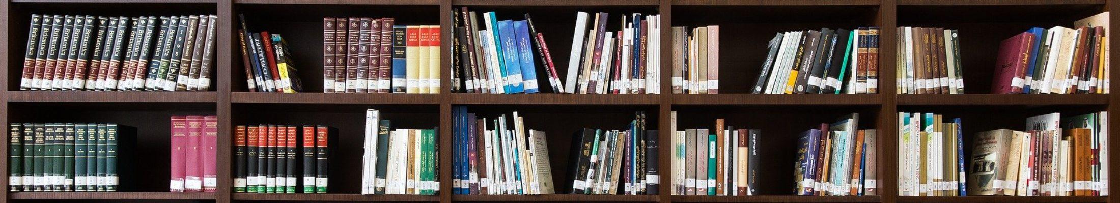 Knihovna Černilov